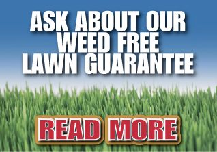 Ask about our weed free lawn guarantee