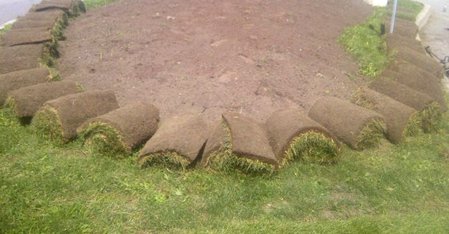 Sod being layed