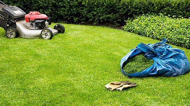 Lawnmower cutting grass 2