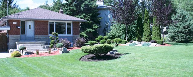 Small home with landscaped yard